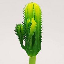 Kaktusz 12cm