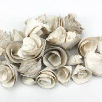 Háncsvirág fehér