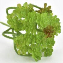 Pozsgás műnövény 9,5 cm x 13 cm