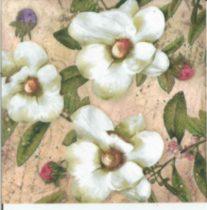 szalvéta, dekorszalvéta, virágos szalvéta, virág, tavaszi virág, magnolia