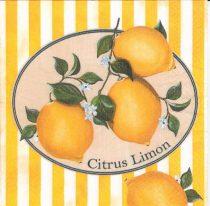 Dekorszalvéta - Citrus Limon