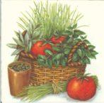 Dekorszalvéta - Tomato
