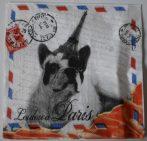 Dekorszalvéta - Loudou a Paris
