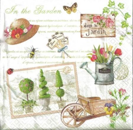 Dekorszalvéta - Gardening
